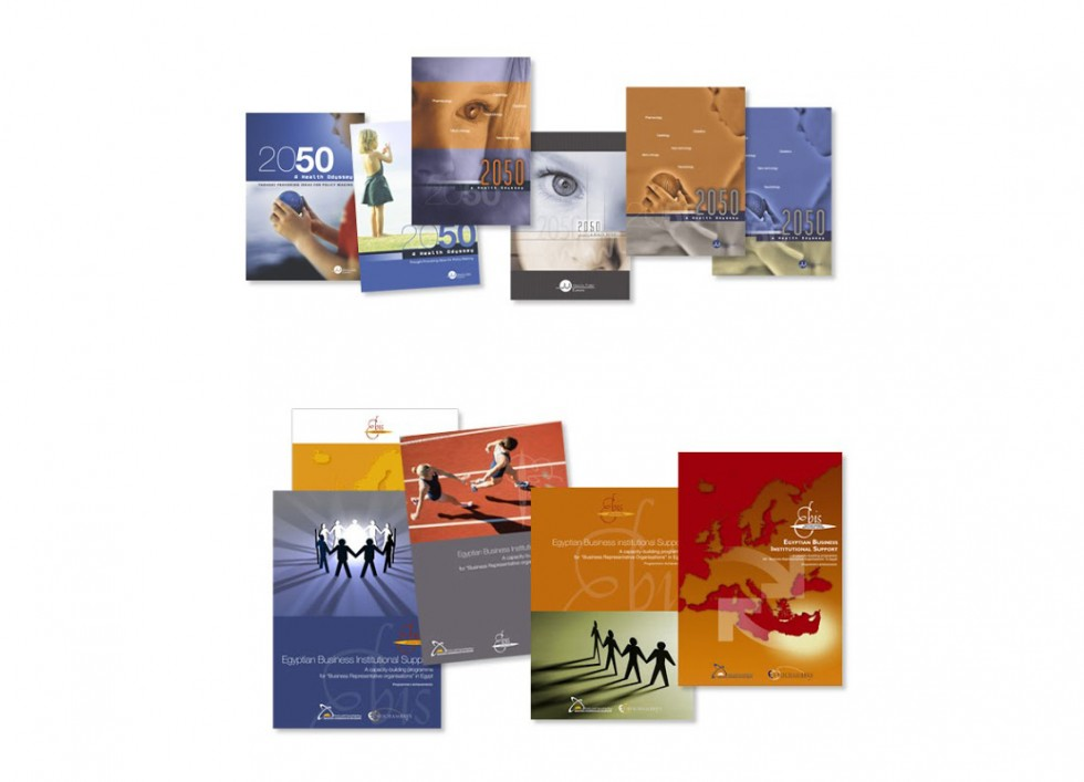 Brochure pour healthfirsteurope. Brochure pour le Egyptian Business Institutional Support.