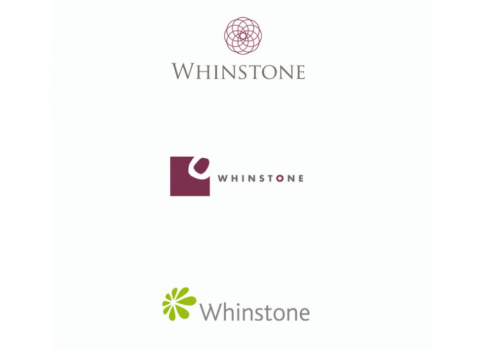 Proposition de logo pour Whinstone (business consultancy).