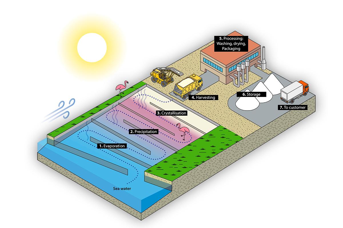 Illustration du principe d'extraction du sel de mer.